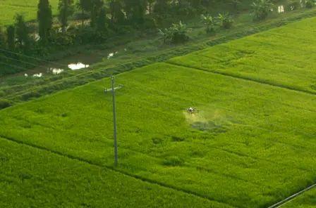 Обзор фермы в реальном времени